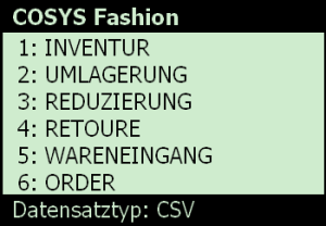 COSYS Proprietäre Fashion Software